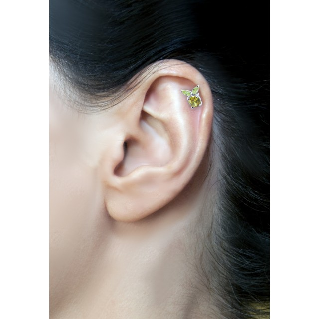 Cartilage Piercing Ring Or Barbell
