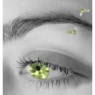Augenbrauenpiercing 1.2x10mm mit Kristallen und 925 Silber